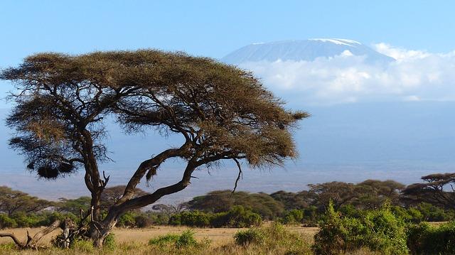 David Vidrih - pogled na mogočno goro Kilimandžaro